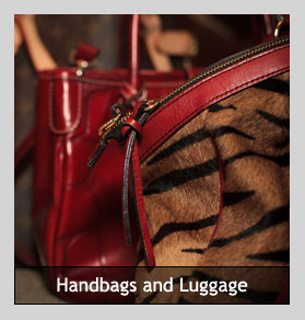 handbags and luggage
